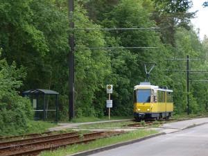 自然豊かな景観の中を走ることで有名な、69系統で運行中のKT4D。 A KT4D runs as route 69.